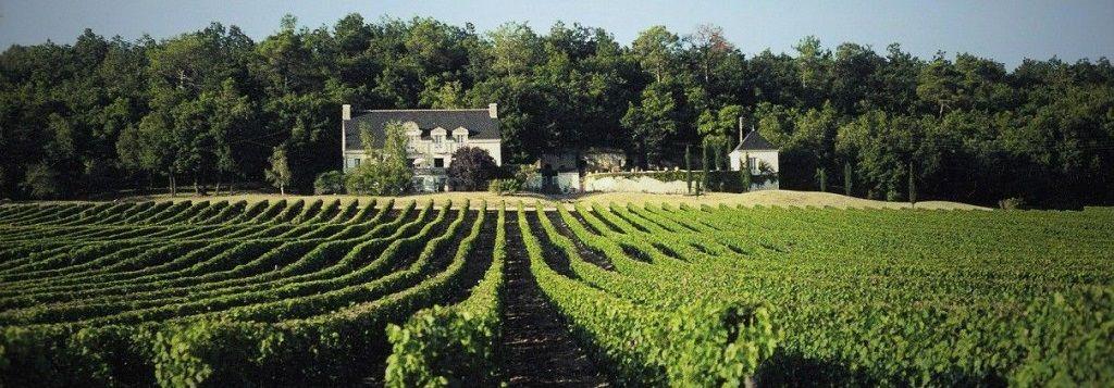 Chambre d'hôte et vin de Chinon
